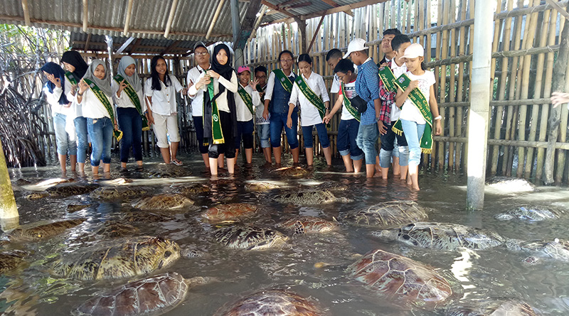 Deluang Sari, Tanjung Benoa, Delta Kecil Sejuta Kehidupan