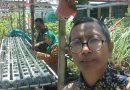 Bermodal Sampah, SDN Tanah Kalikedinding I Hasilkan Jutaan Rupiah