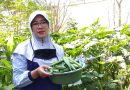 Yuli Rachmawati, Penggerak Lingkungan Hidup SMPN 20 Surabaya