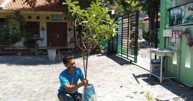 Bantuan Pohon Sawo dari Warga