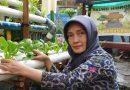 Eny Murtiningtyas, Sabet Penghargaan Hidroponik Surabaya dan Jatim