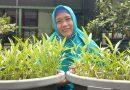 Ana Sumarnah, Aktifkan Semua Sarana LH  SDN Banjar Sugihan II