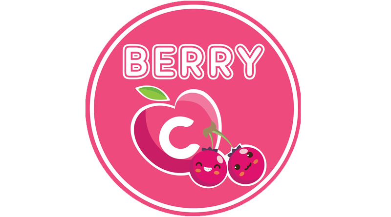 BerryC Indonesia Bantu Pengembangan Bisnis Proyek Peserta Pangput LH 2021